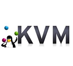 pictures/x86-kvm.img.jpg